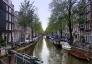 Holland tulipán show