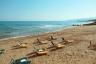 Cactus Beach ****
